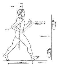宇都宮市自然堂整骨院の生理歩行について